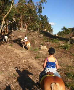 201520horse20riding20portugal