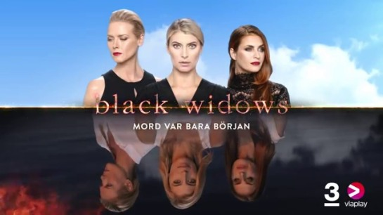 Bild 7, Black Widows.JPG
